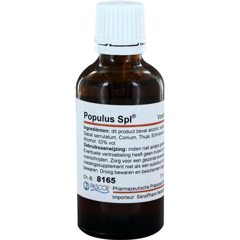 Populus Spl.
