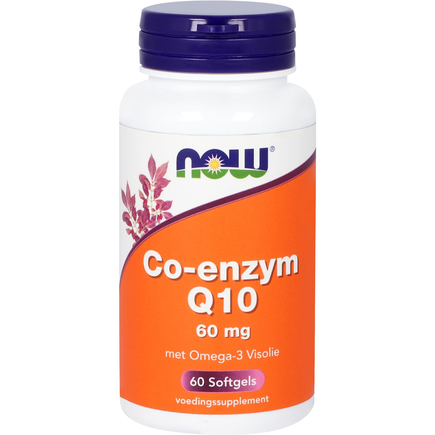 Now Co Q 10 60mg W Omega 3 60sft