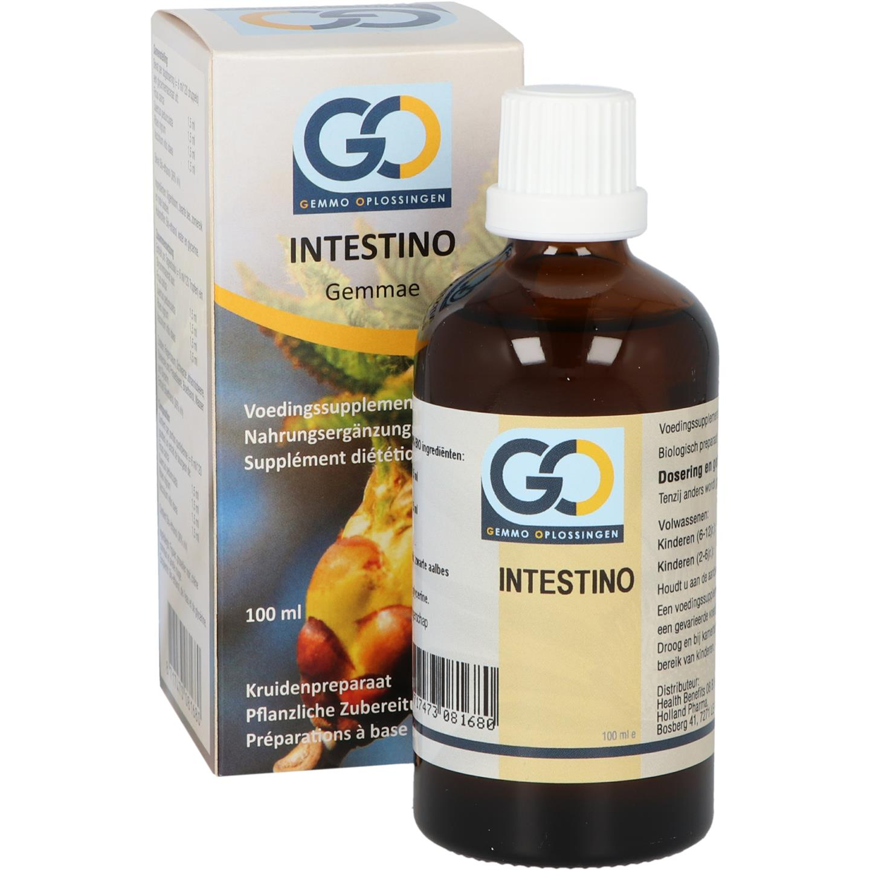 GO Intestino