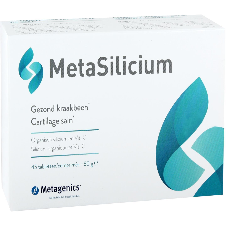 MetaSilicium