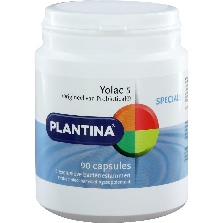 Yolac 5